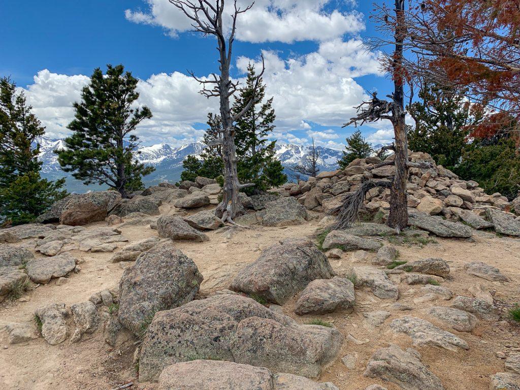Summit of Deer Mountain